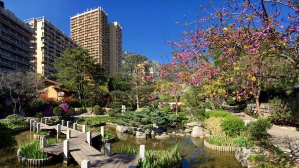Ogród Japoński w Monako Monte Carlo